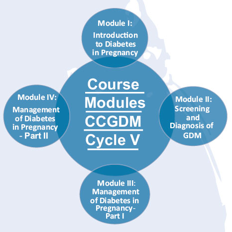 diabetes cycle of care pdf